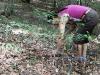 9999lago-di-vico-2011-03-settembre-sentiero-