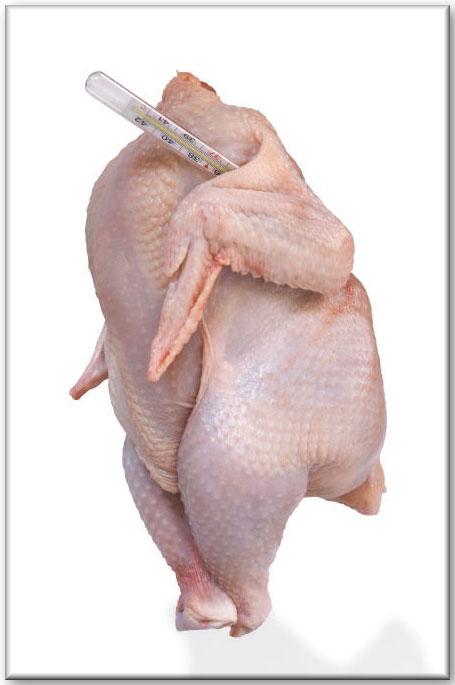pollo2.jpg